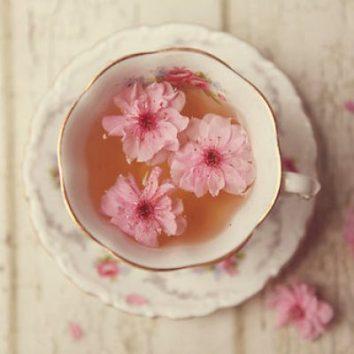 Tea-Katie-Carlisle-Brown-400x4000_06e15145-5056-a36a-0a2bcb95d3ca6011